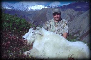 Knik Glacier Adventures - Hunting: Mountain Goat